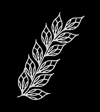 Decorative leaf graphic