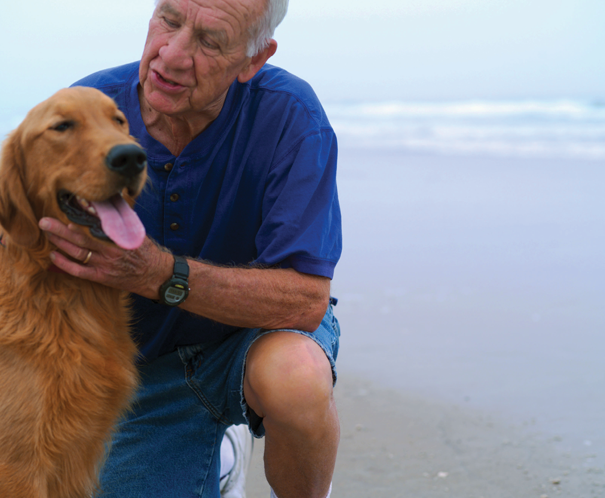 Senior man with dog on beach