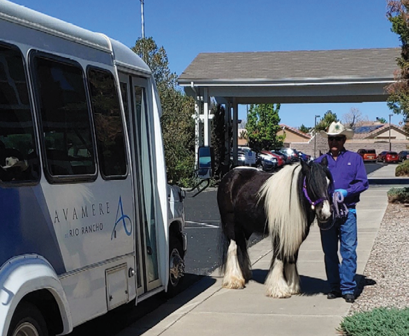 Poetry the Horse Visits Avamere at Rio Rancho